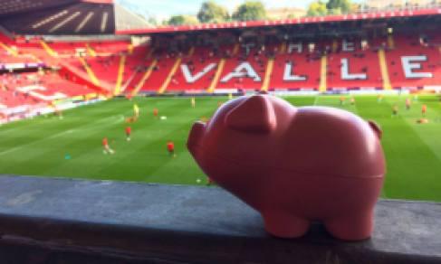 Babi unyu yang dilempar ke lapangan. (tribunnews)