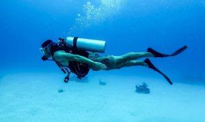 Diving melatih kelenturan otot (Wikipedia)